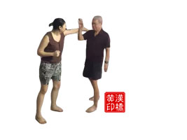 Wong`s Taiji : 揽雀尾之肘(outward-coiling & elbow)
