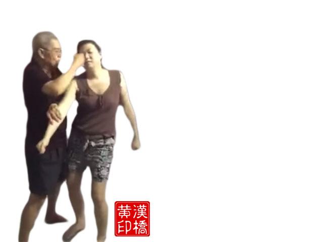 Wong`s Taiji – 搂臂冲拳followed by 金鸡独立