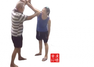 Taiji subdues straight/hook punch by 玉女穿梭