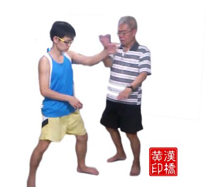 黄家太极:分花拂柳(单手转身甩)