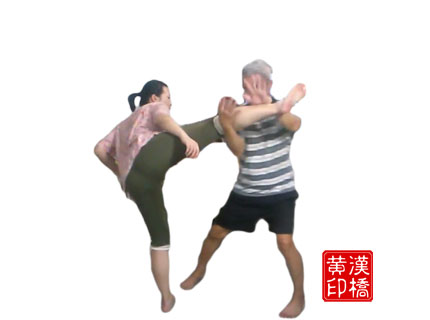 Tai-ji : 野马分鬃 subdues high kick
