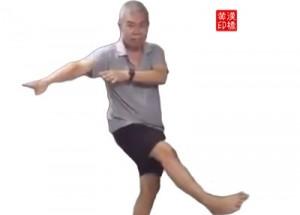 Tai-ji  solo of 弯弓射虎 (in 3 steps)