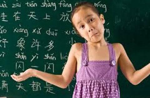 时事评论 : 华文,华语,难学 ?