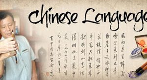 The mystery of the Chinese language