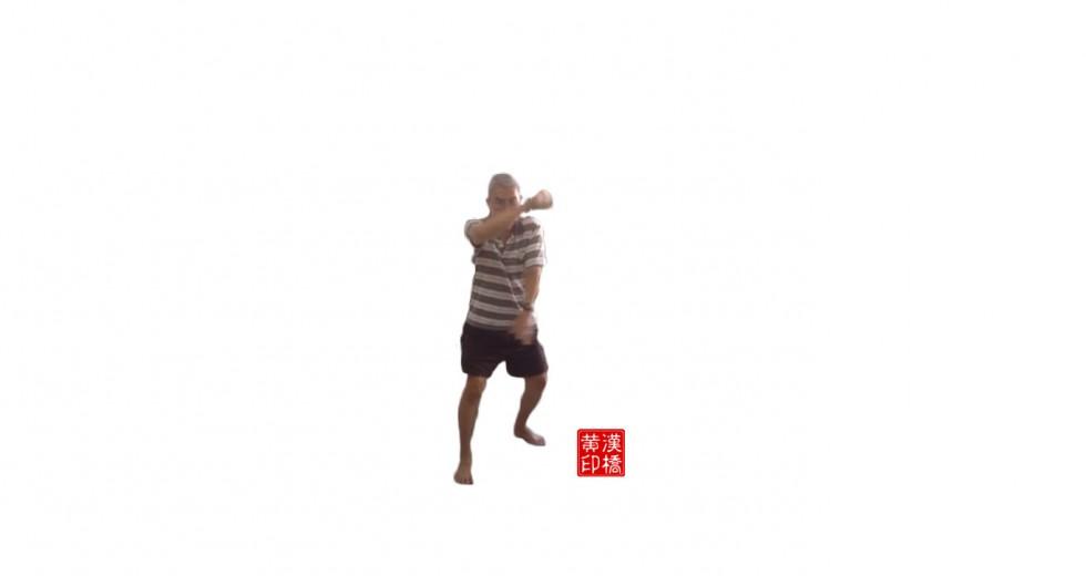 太 极 散手(tai-ji extra form):交臂盘龙掌(cross-hand circular strike)